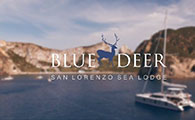 Blue Deer - San Lorenzo Sea Lodge